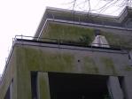 Algen an WDV-Fassaden = ein Mangel